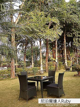 溫暖的冬陽下,能在這綠意環抱的庭院裡閒坐一會兒、喝一壺熱騰騰的奶茶,是多麼享受啊!