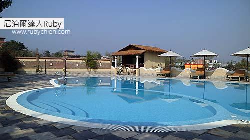其他高級旅店的泳池